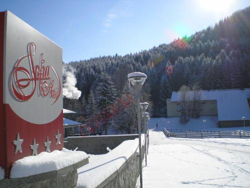 SUCEAVA Oferta Paste 2020 Bucovina - Hotel Sofia Sucevita