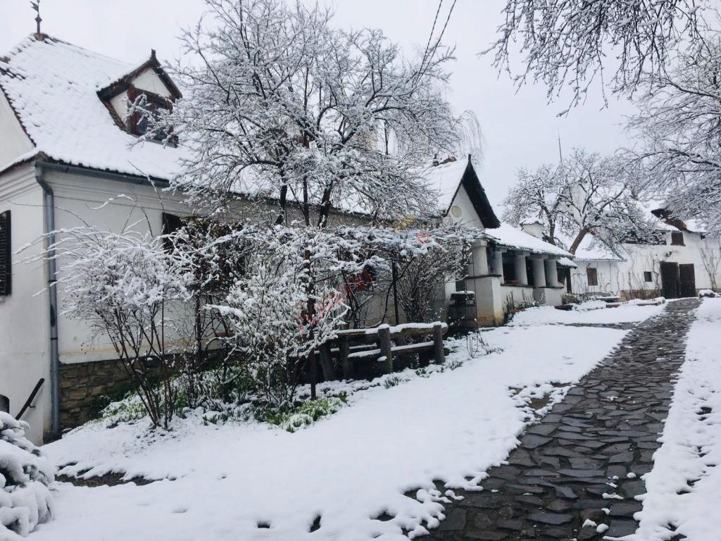 COVASNA Revelion 2021 nobiliar la Castelul Kalnoky din Miclosoara