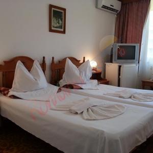 CONSTANȚA Oferta Litoral 2018 - Hotel Apollo Neptun