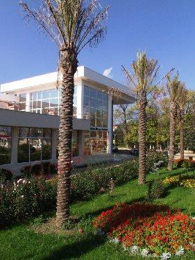 CONSTANȚA Oferta Litoral 2019 - Hotel Qeen Vera Mamaia
