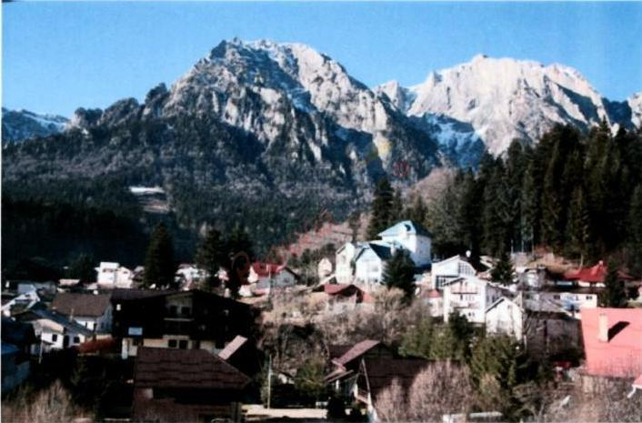 PRAHOVA Oferta la Munte 2020 - Pensiunea Vila Alba Busteni