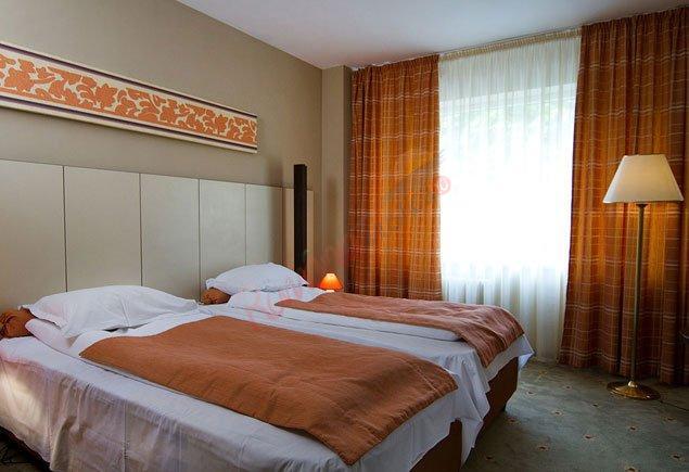 PRAHOVA Oferta la Munte 2020 - Hotel Rina Sinaia