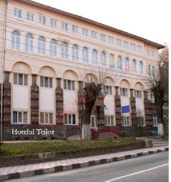 VALCEA Oferta Balneo 2017 - Hotel Teilor Calimanesti